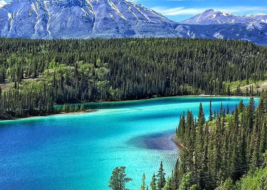 Lake view in Yukon